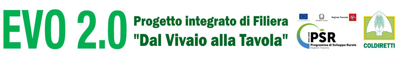 P.I.F. – EVO 2.0 Logo